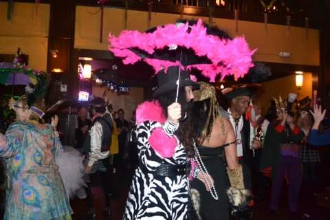 Zebras and peacocks at the Mardi Gras